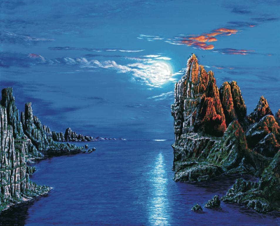Ener-chi Art Tierra: Reino Animal
