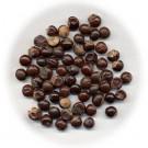 Guaraná en semillas